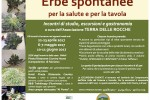 erbe spontanee (003)
